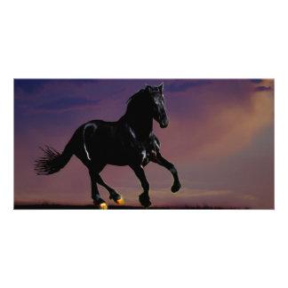 Horse galloping free photo card