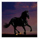 Horse galloping free poster