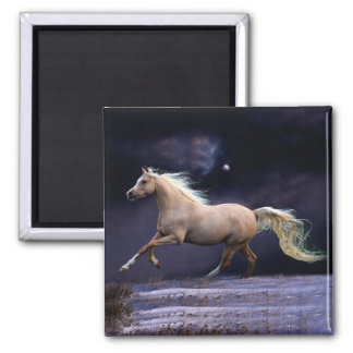 horse galloping 2 inch square magnet