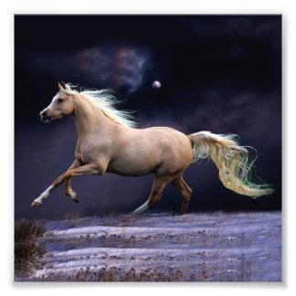 horse galloping photo print