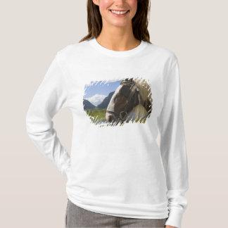 Horse, Gap of Dunloe, County Kerry, Ireland T-Shirt