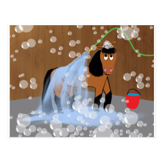 Horse Getting a Bath.tif Postcard