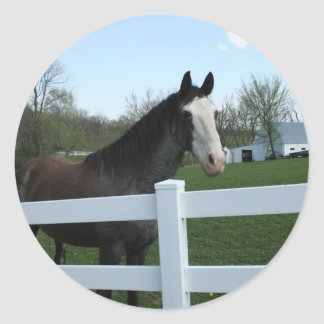 Horse, Good Morning! Classic Round Sticker