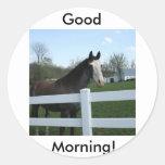 Horse, Good Morning! Classic Round Sticker
