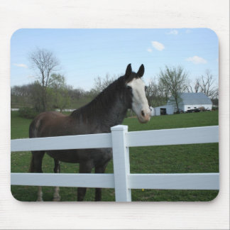 Horse, Good Morning! Mouse Pad