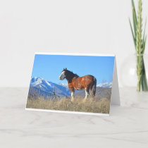 Horse Grass and Mountains Holiday Card