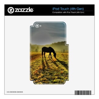 Horse Grazing at Sunrise in Misty Field Photo Decal For iPod Touch 4G