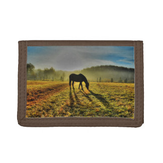 Horse Grazing at Sunrise in Misty Field Photo Tri-fold Wallet