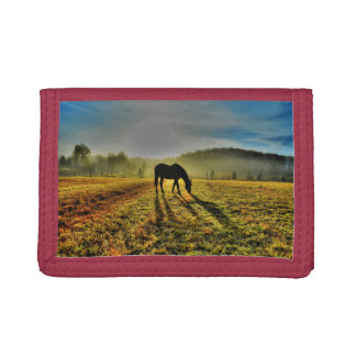 Horse Grazing at Sunrise in Misty Field Photo Tri-fold Wallets