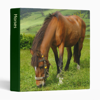 Horse grazing binder