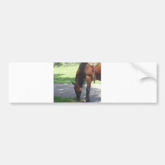Horse Grazing Car Bumper Sticker