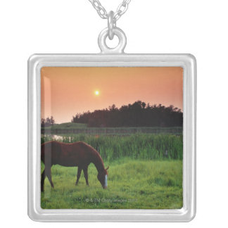 Horse Grazing in Field at Sunset Near Edmonton, Square Pendant Necklace