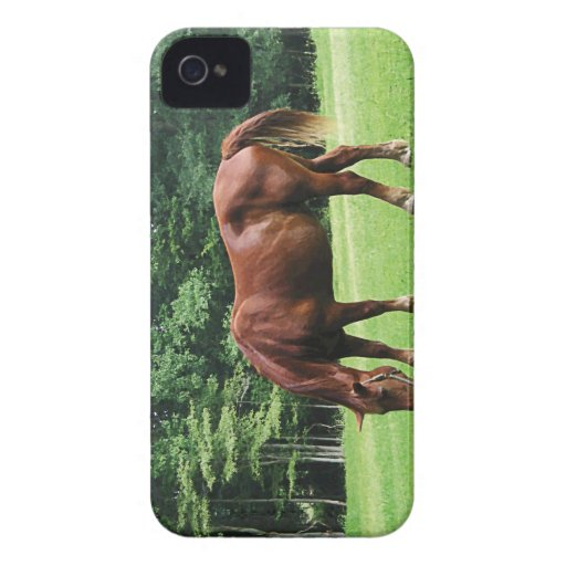 Horse Grazing in Pasture Blackberry Bold Cover