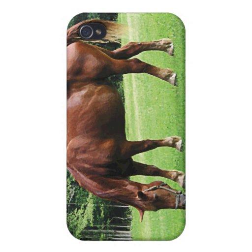 Horse Grazing in Pasture iPhone 4 Case