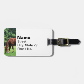 Horse Grazing in Pasture Travel Bag Tag