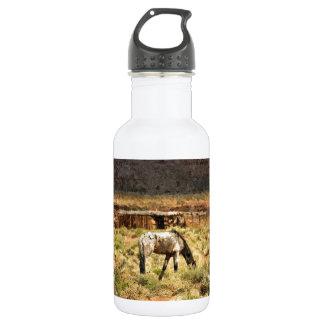 Horse grazing, Monument Valley, UT 18oz Water Bottle