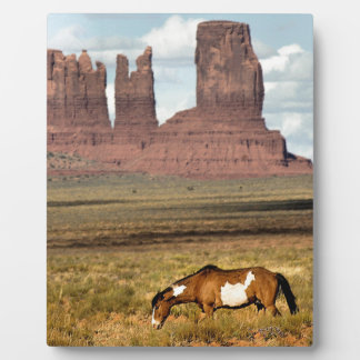 Horse Grazing, Monument Valley, UT Photo Plaque