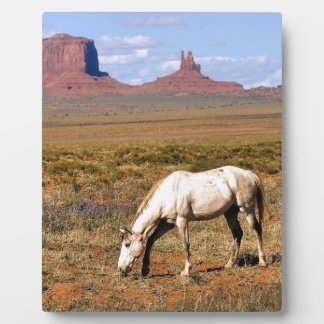 Horse grazing, Monument Valley, UT Plaque