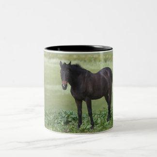 Horse Grazing Mug