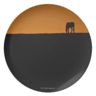 Horse grazing on Kentucky farm Party Plates