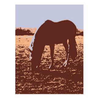 Horse Grazing Pop Art Postcard
