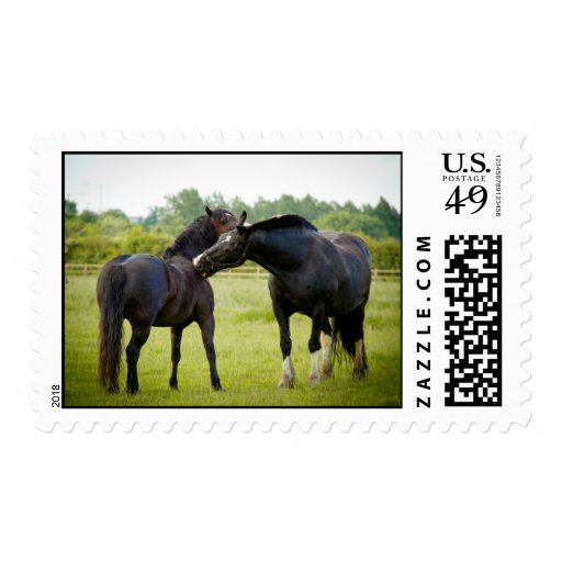 Horse Grazing Postage Stamp