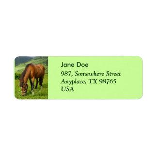 Horse grazing return address label