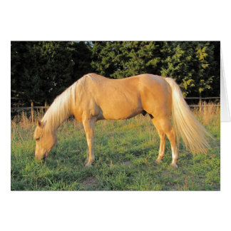 Horse Greeting or Note card #1
