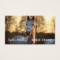 Horse Groom Photo Professional Business Card