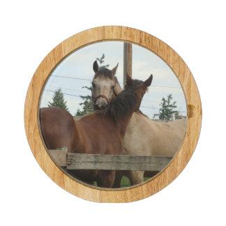 Horse Grooming Cheese Platter