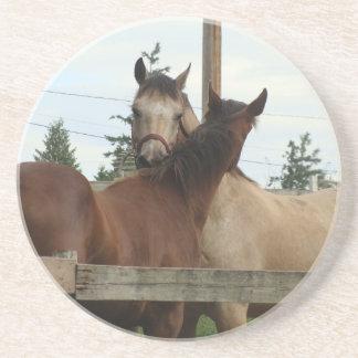 Horse Grooming Sandstone Coaster