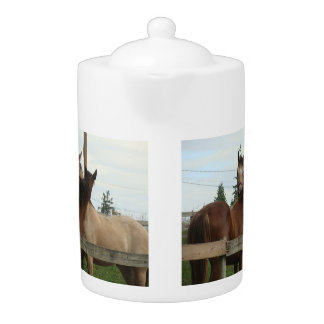 Horse Grooming Teapot
