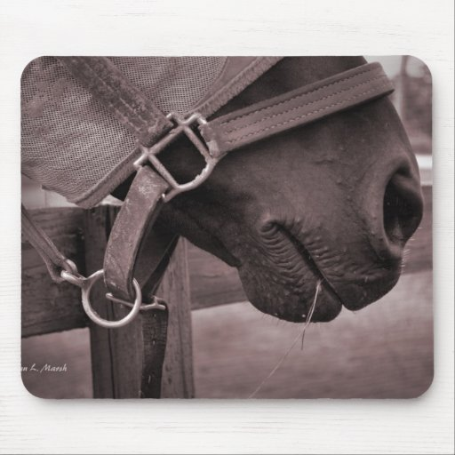 Horse halter muzzle hay grass sepia mouse pad