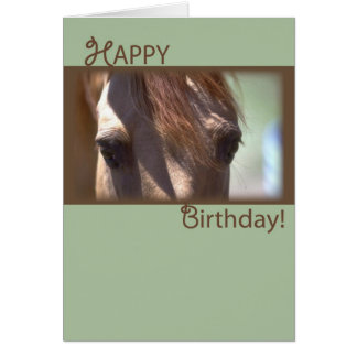 Horse, Happy Birthday Greeting Card