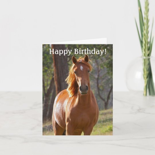 Horse Happy Birthday Card For Horse Lovers Zazzle