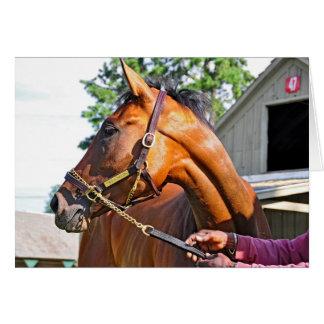 Horse Haven Barn  #47 at Saratoga Card