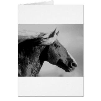 Horse Head Black & White Card