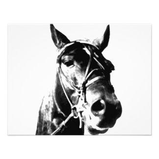 Horse Head Custom Invites