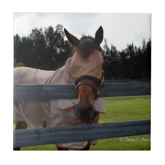 Horse head on over fence fly mask ceramic tile