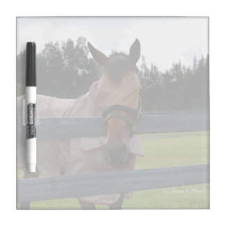 Horse head on over fence fly mask Dry-Erase board