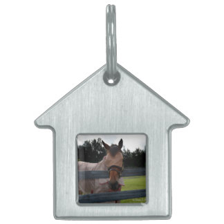 Horse head on over fence fly mask pet name tag