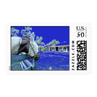 horse head over fence blue colored postage