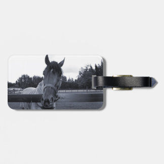 Horse head over fence head on bw bag tags