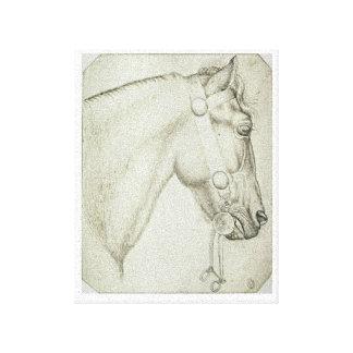Horse Head Pencil Sketch Design Stretched Canvas Prints