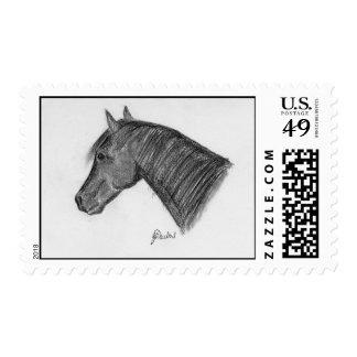 Horse head portrait stamps