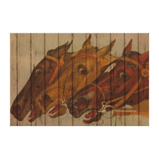 Horse Head Portraits On Old Wood Canvas Print