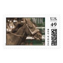horse head postage