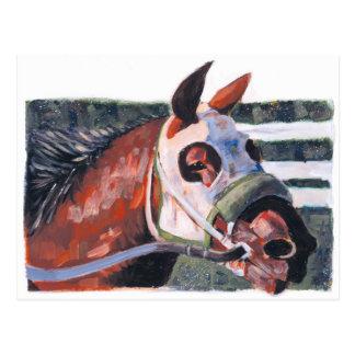 Horse Head Postcard