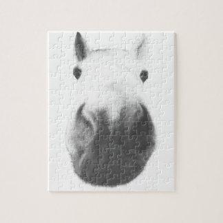 Horse head puzzles