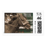 horse head stamps